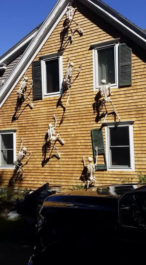 climbing skeletons would turn a side of your house into a gorgeous display - Halloween Ideas For Home