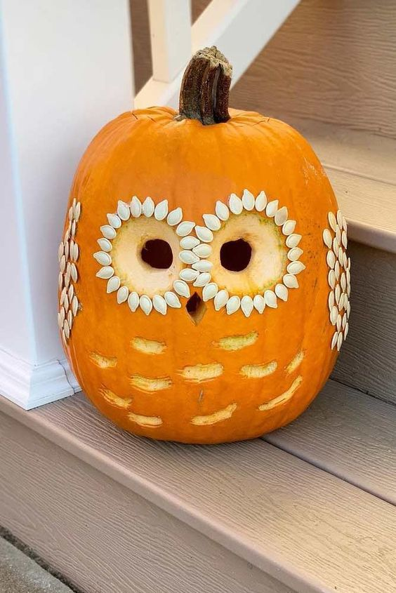 a cute carved owl pumpkin done simply and in a very fast way is a cool idea for the fall or for Halloween