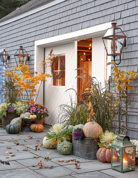 colorful and all-natural heirloom pumpkins in buckets and on the ground for cozy fall and Thanksgiving decor
