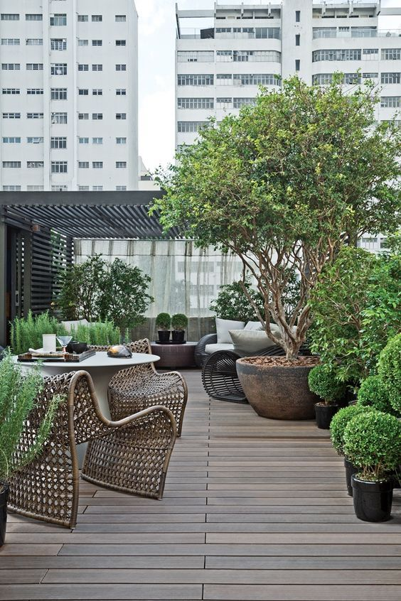 a modern rooftop terrace with potted trees and greenery, wicker chairs and loungers, a concrete table