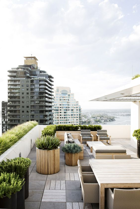a modern rooftop terrace with wooden and wicker furniture, printed upholstery. potted greenery and succulents