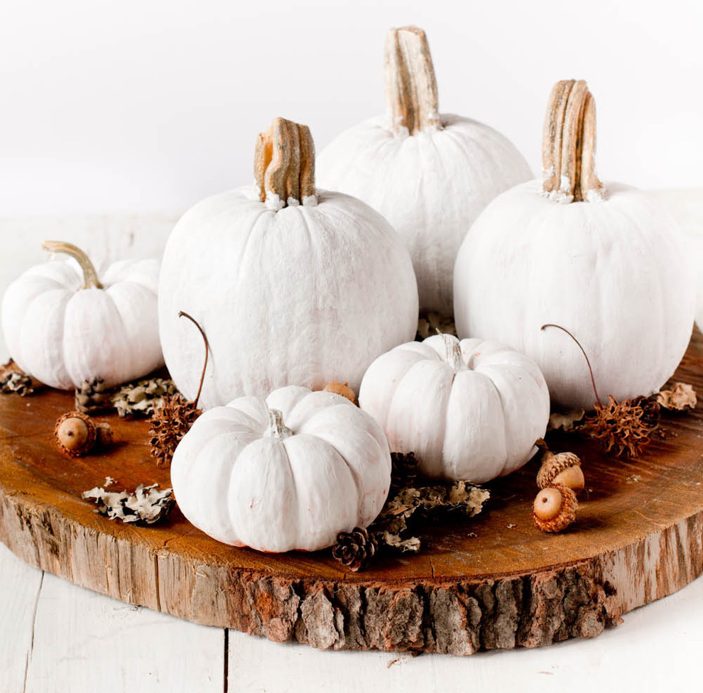 A group of tiny pumpkins clustered together on a wood trunk's slice would make a perfect, easy to move centerpiece.