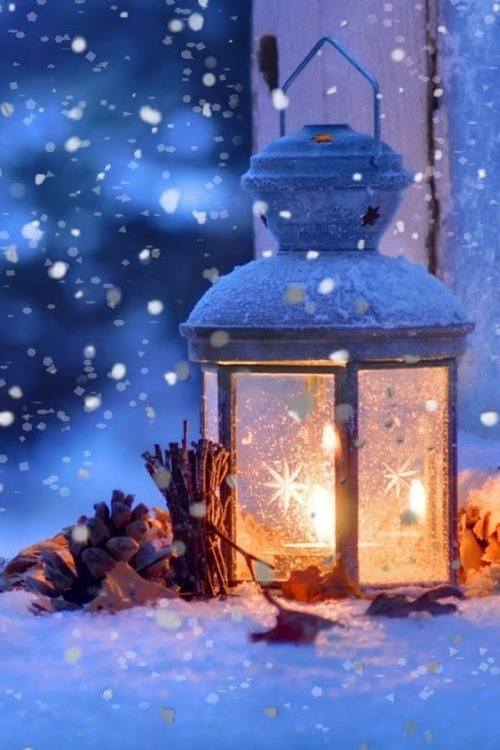 Image result for christmas lantern