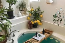 a bathtub surrounded by greenery and succulents in various planters and with some cacti and a lemon tree