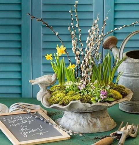 a concrete bowl with moss, daffodils, hyacinths and pussy willow growing in it is a cool Easter idea