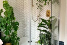 a contemporary bathroom with potted plants on the floor and suspended in the shower space