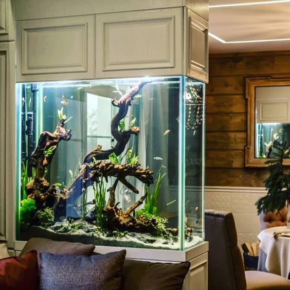 a large aquarium enclosed in panels is a beautiful and cool space divider for a living and dining room