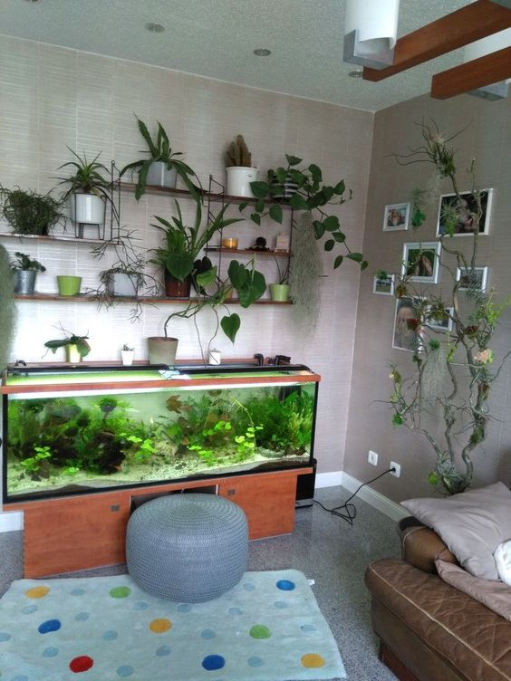 a living nook with a fish tank and lots of potted plants will relax your room and make it welcoming