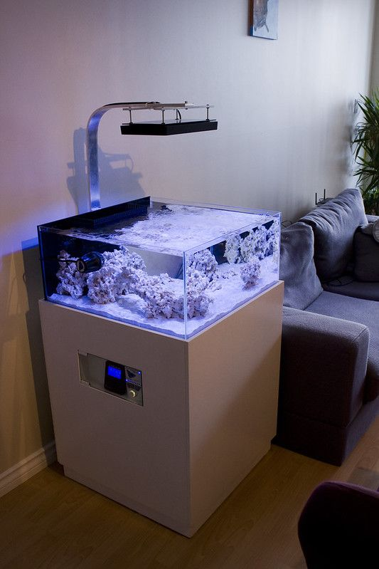 a mini aquarium on a stand and with lights over it is a very stylish decoration for the space
