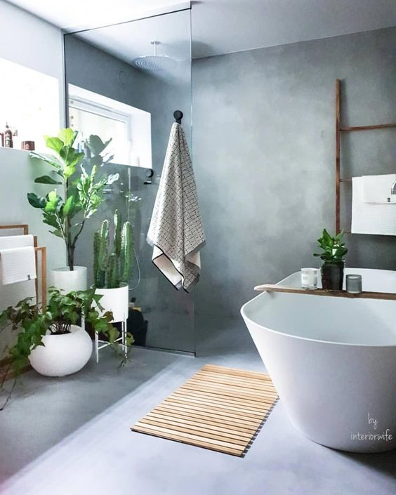 a minimalist bathroom done in concrete, with lots of statement plants and a large cactus to refresh this space