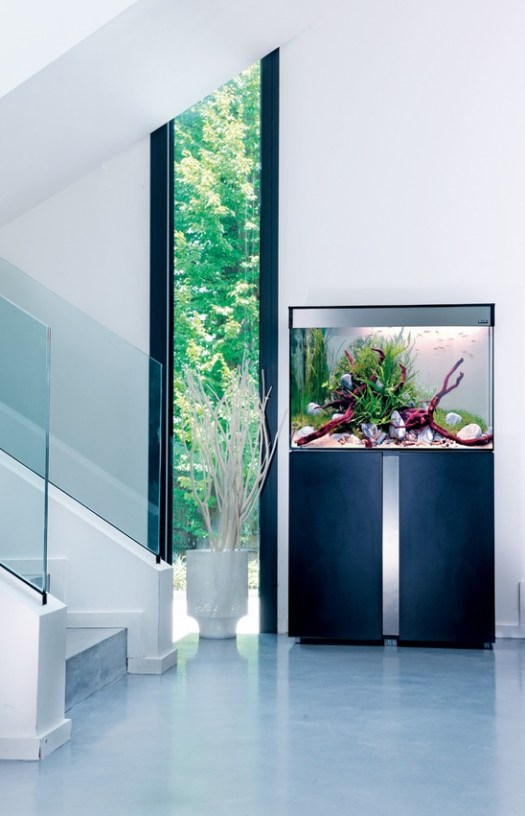 a minimalist space spruced up with a fish tank on a metal stand that adds decorative value to the nook