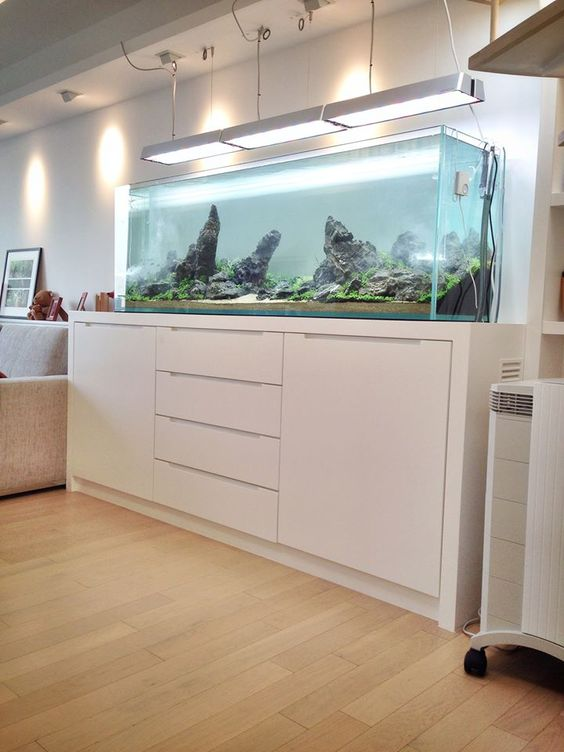 a minimalist white space finished with a no fish aquarium looks more living and cool