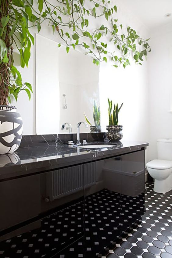 a monochromatic bathroom with a black stone vanity and succulents and a statement climbing plant on the wall