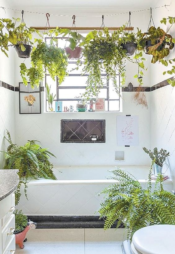 a small neutral bathroom brought to life with suspended planters with greenery and with more plants around