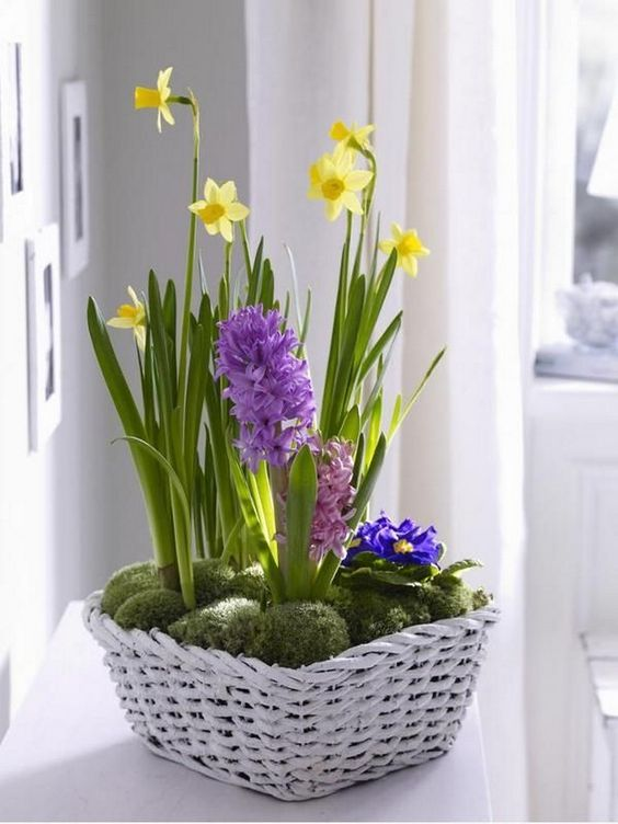 a white basket with moss and yellow and purple sprign bulbs is a gorgeous Easter and spring decoration