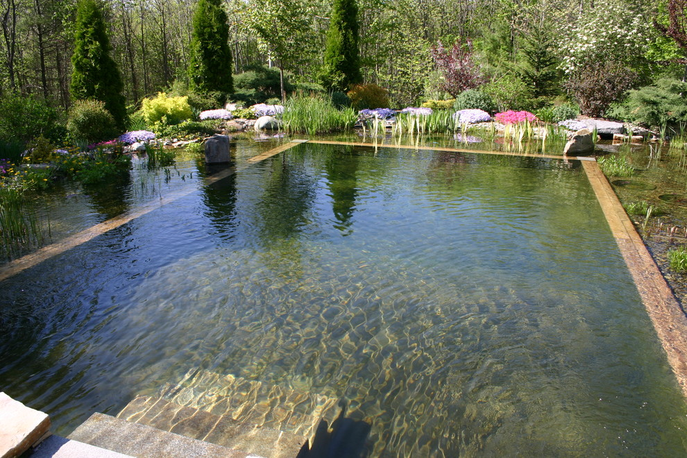 67 cool backyard pond design ideas digsdigs for Swimming pool koi pond conversion