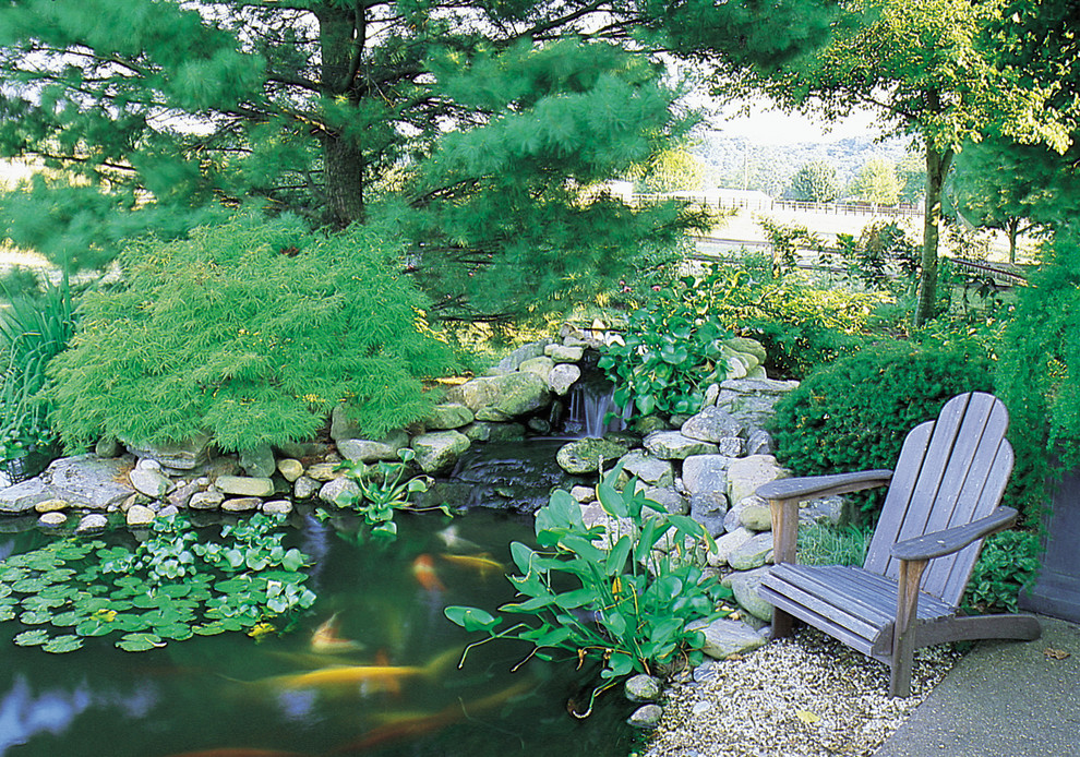 a weathered Adirondack chair should be near every backyard pond because of the fact it fit nature surroundings very well