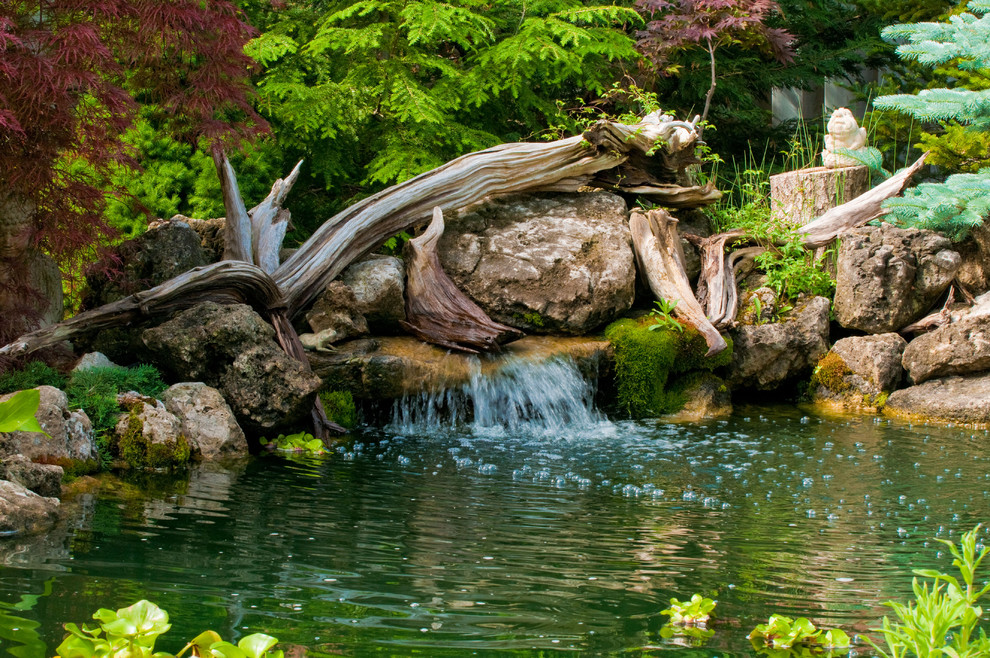 driftwood is a great addition to any water feature