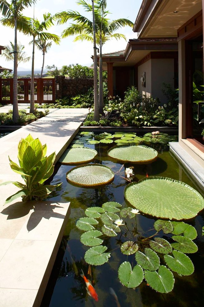 67 cool backyard pond design ideas digsdigs for Garden pond design and construction