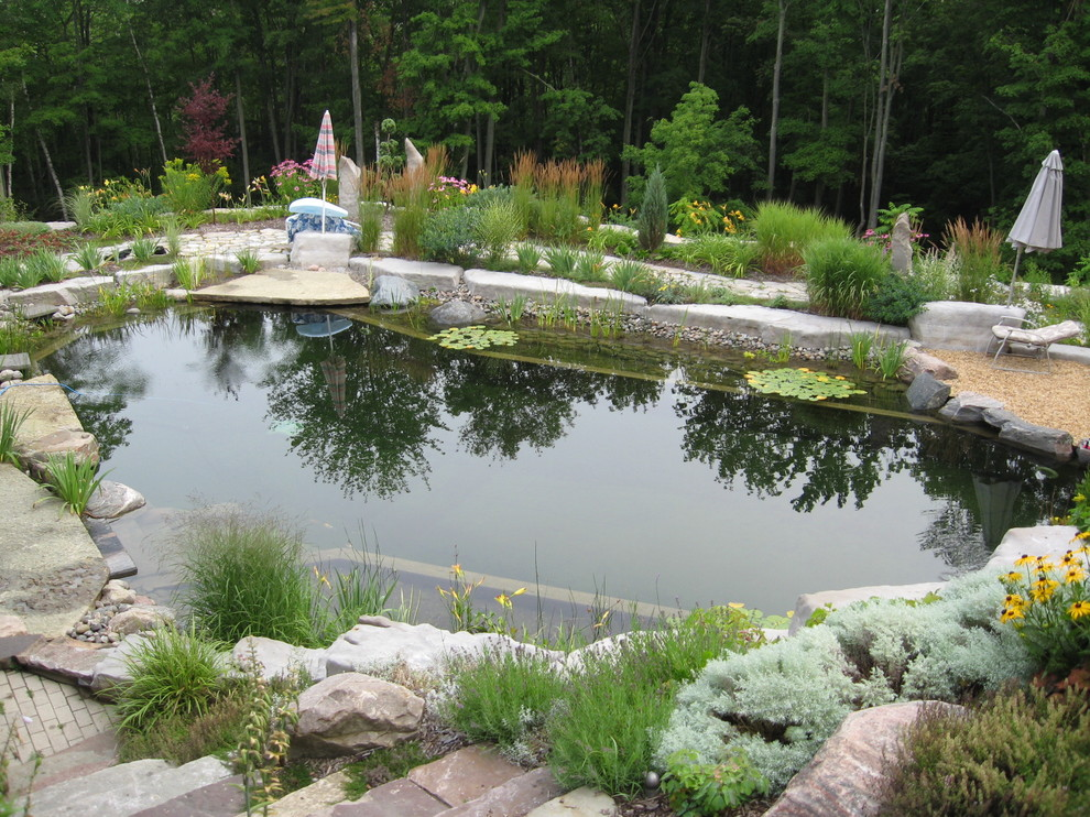 water plants is a great natural filter so you dont need to add chlorine to a swimming pond