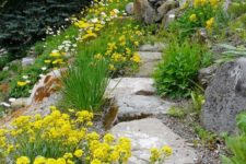 a gravel and stone garden pathway with greenery and bright yelow blooms around is a cool idea for a natural feel