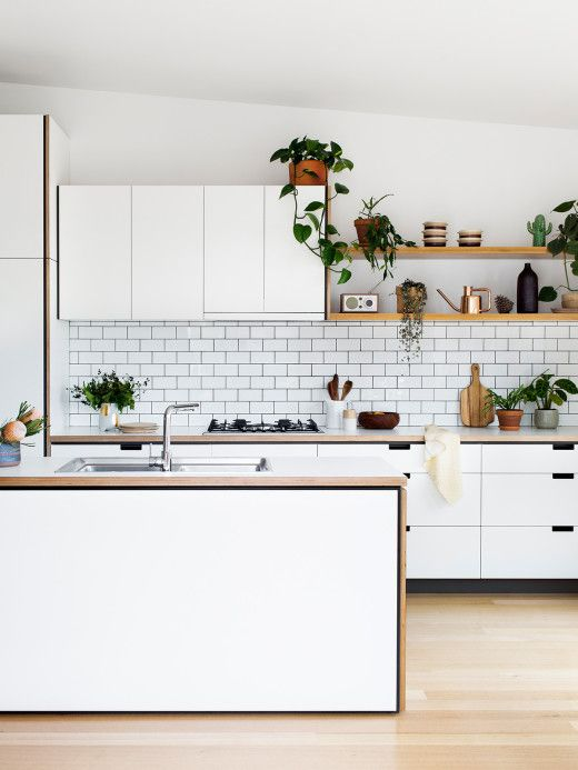 a contemporary white Nordic kitchen with sleek cabinets, wooden countertops, potted greenery and sa white subway tile backsplash