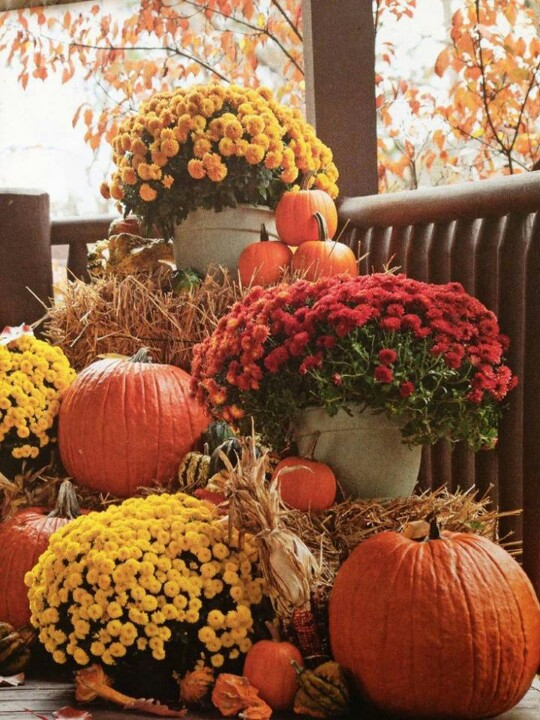 55 cozy fall patio decorating ideas digsdigs Beautiful fall front porches