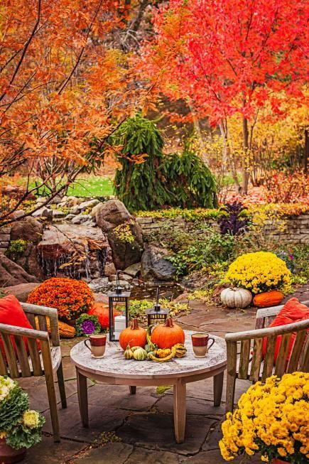 Fall colors could always create additional reasons to spend an evening outdoors.
