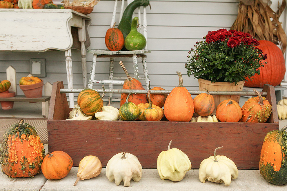 Fall Veggies Could Be Used To Decorate Your Kitchen And Any Outdoor Space  Too. Part 65