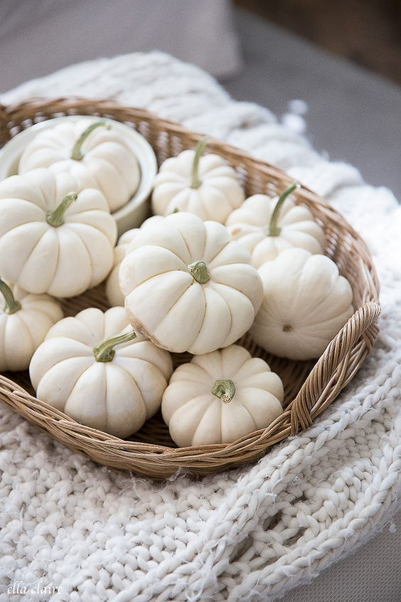 a basket tray with white pumpkins is a cool and cozy fall decoration or a centerpiece in neutral shades