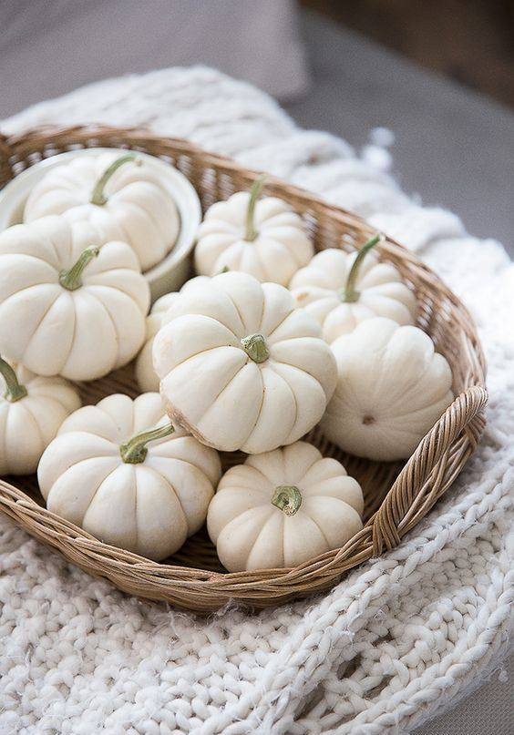 a basket with white pumpkins placed on a white knit blanket is a very cozy fall decoration