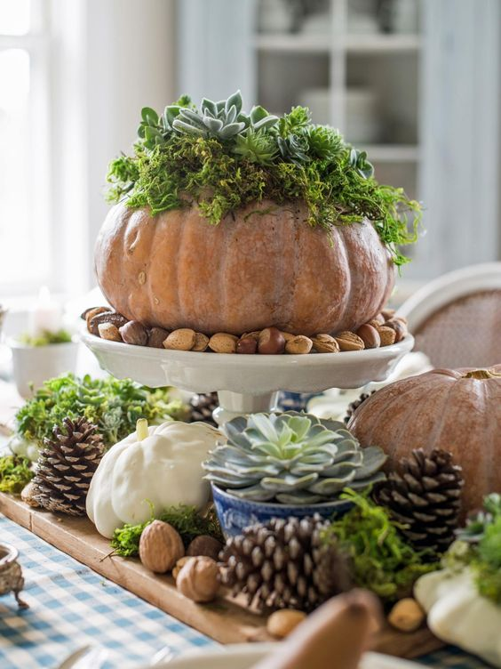 a fall centerpiece of pinecones, nuts, pumpkins with moss and sucuclents and potted succulents