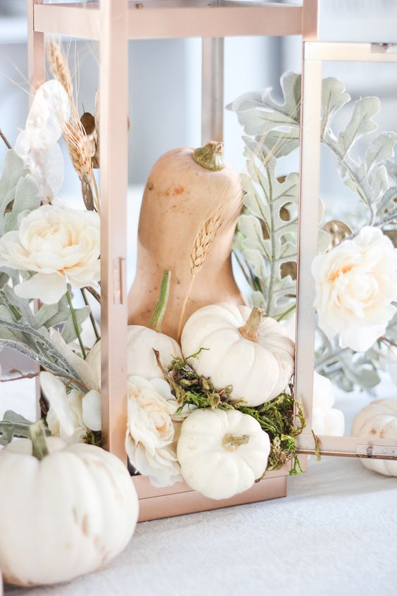 an airy fall centerpiece of a lantern with white pumpkins, a chalked gourd, pale greenery and white blooms and moss