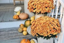 simple outdoor fall decor with pumpkins and gourds plus bright blooms in planters is stylish and will make your front porch inviting