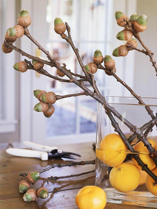 a clear vase with citrus and branches with acorns is a bright fall centerpiece