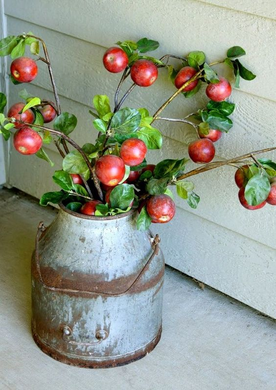 a vintage metal bucket with apple branches is a pretty rustic decoration