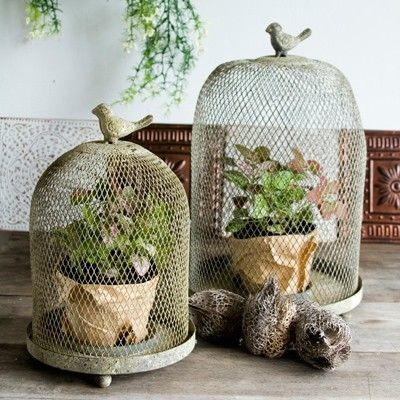 Decorative Bird Cages Could Definitely Bring A Rustic Vibe To Any Space.