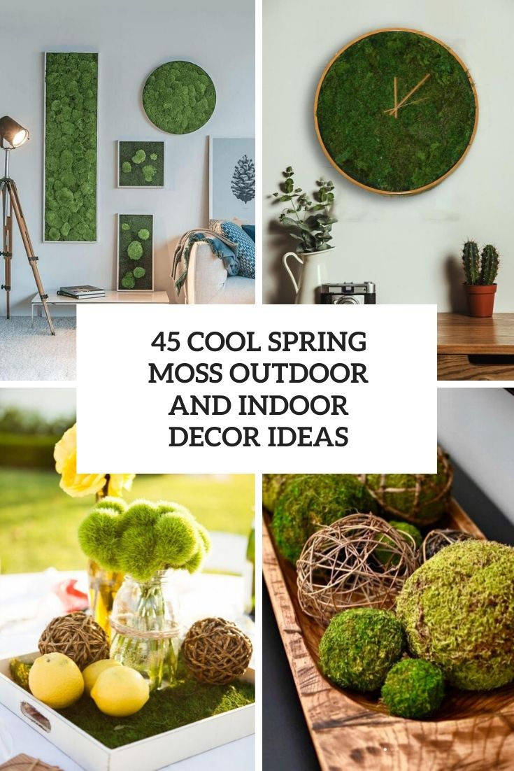cool spring moss outdoor and indoor decor ideas cover