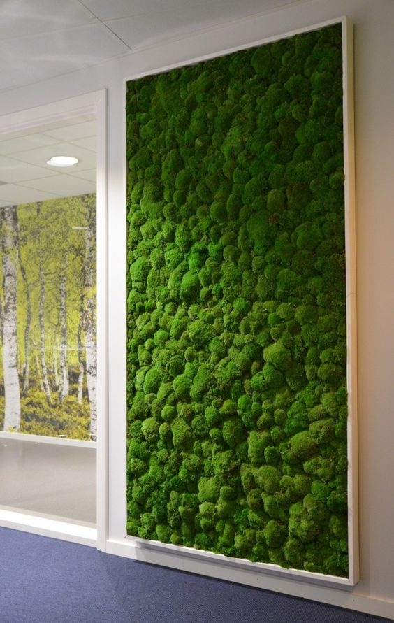 a framed moss wall is a cool and refreshing idea for a modern space, it's very bold and very trendy