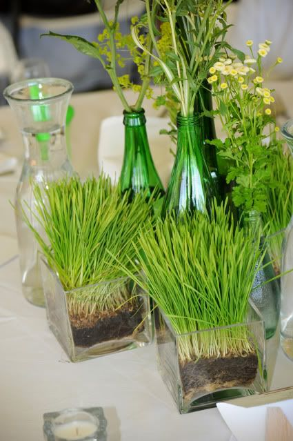 a fresh spring centerpiece with wheatgrass in sheer square vases, bottles with wildflowers is living and cool