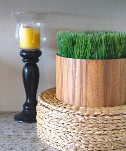 a simple and modern plywood planter with wheatgrass is a lovely spring decoration to rock