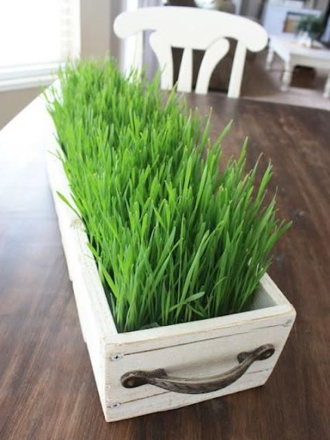 a white wooden box planter with wheatgrass and handles is a lovely and cool fresh farmhouse decoration