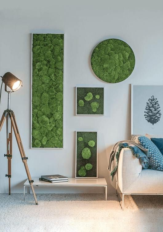 an arrangement of moss wall art pieces in frames, in various shapes for a fresh and modern look