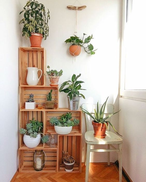 crates with potted greenery are a nice idea for lacony decor   though you may store anything you want there