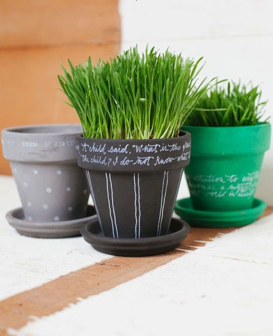 painted and chalkboard pots with wheatgrass are lovely and cheerful for spring, make some yourself