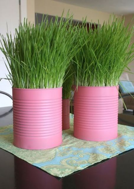 pink tin cans with wheatgrass will form a bold and cool spring centerpiece or decoration