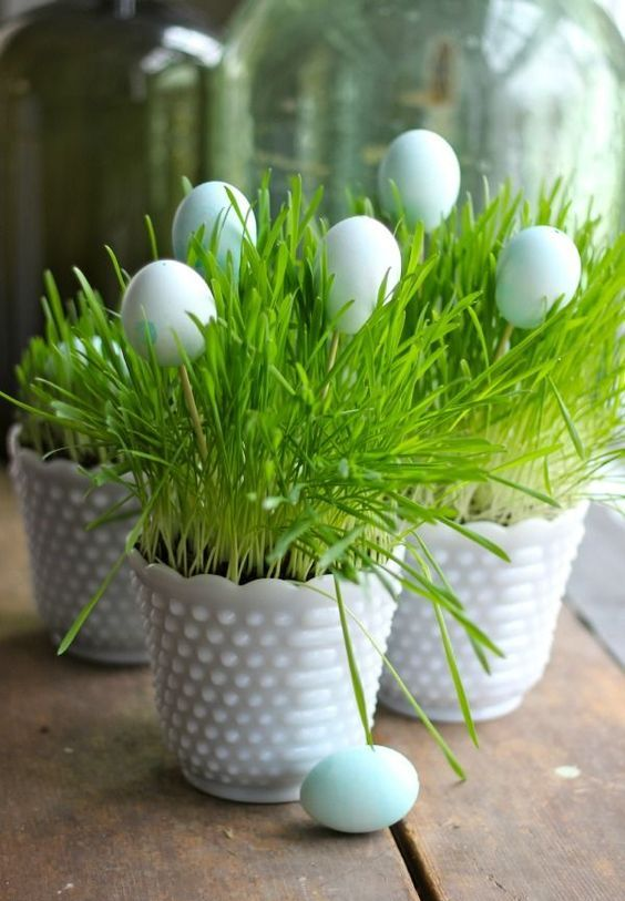 white milk planters with wheatgrass and some fake eggs for Easter or just for spring are a cute idea