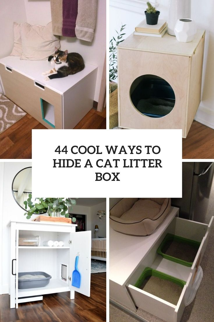 cool ways to hide a cat litter box cover