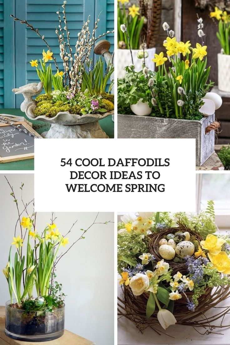 54 Cool Daffodils Décor Ideas To Welcome Spring