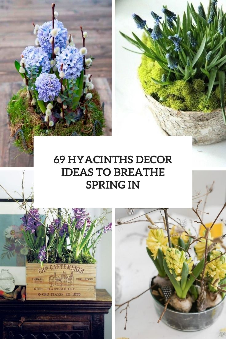 69 Hyacinths Décor Ideas To Breathe Spring In